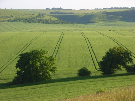 Woodborough Hill in Wiltshire. Hier wurde das KLF-Video gedreht.    © Copyright Andrew Smith