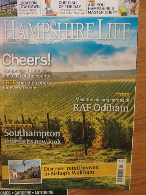 """Einer der Artikel in """"Hampshire Life"""" führte mich nach Setley Ridge. Eigenes Foto."""
