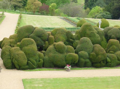 The Elephant Hedge.   © Copyright Richard Humphrey and licensed for reuse under this Creative Commons Licence.