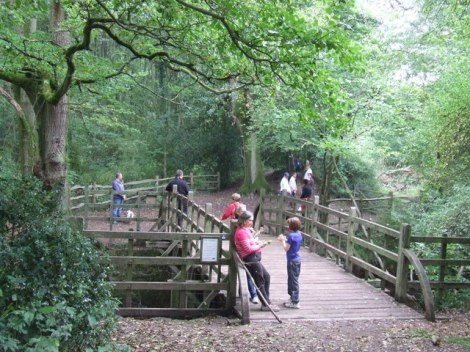 Die Brücke in Hartfield (East Sussex).   © Copyright Malc McDonald and licensed for reuse under this Creative Commons Licence.