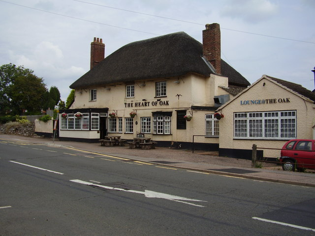 The Heart of Oak in Pinhoe.  © Copyright Anthony Vosper and licensed for reuse under this Creative Commons Licence.