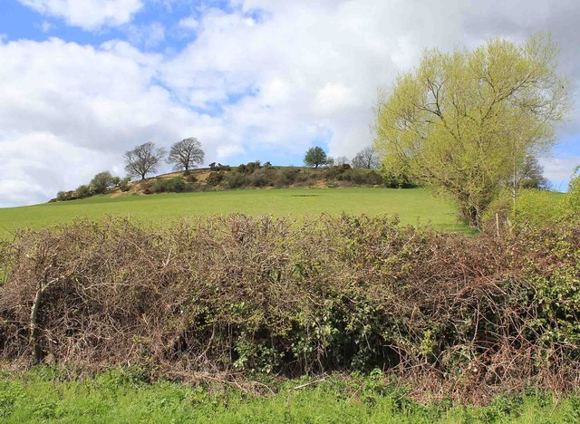 Der Meon Hill bei Lower Quinton. Hier geschah der Mord an Charles Walton.  © Copyright David P Howard and licensed for reuse under this Creative Commons Licence.
