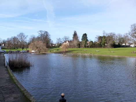 Der Doctors Pond in Great Dunmow (Essex).  © Copyright Robin Webster and licensed for reuse under this Creative Commons Licence.