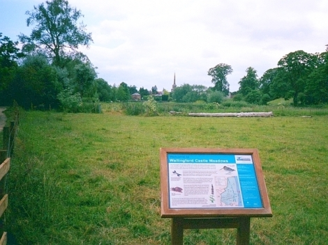 Wallingford Castle Meadows.   © Copyright Rose and Trev Clough and licensed for reuse under this Creative Commons Licence.